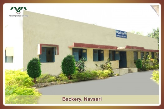 Bakery Training Unit Navsari