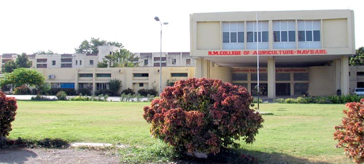 N.M. College of Agriculture